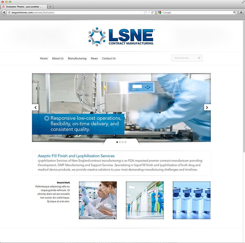 LSNE-website-design-San-Diego-California-Elevate-Creative.jpg