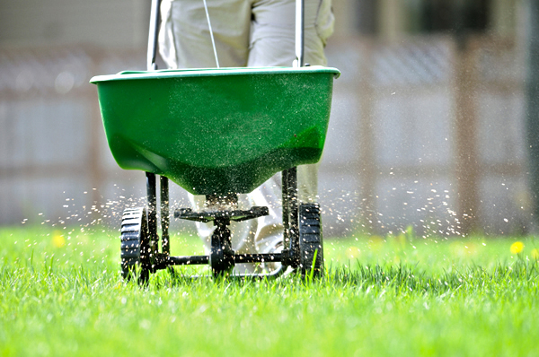 LAWN FERTILIZATION & TREATMENT Having a lush-green weed free yard is not an easy one-step program.  We provide a year round chemical application program which will encourage deep root growth, sustain lush green growth, and suppress troublesome weeds. We care about