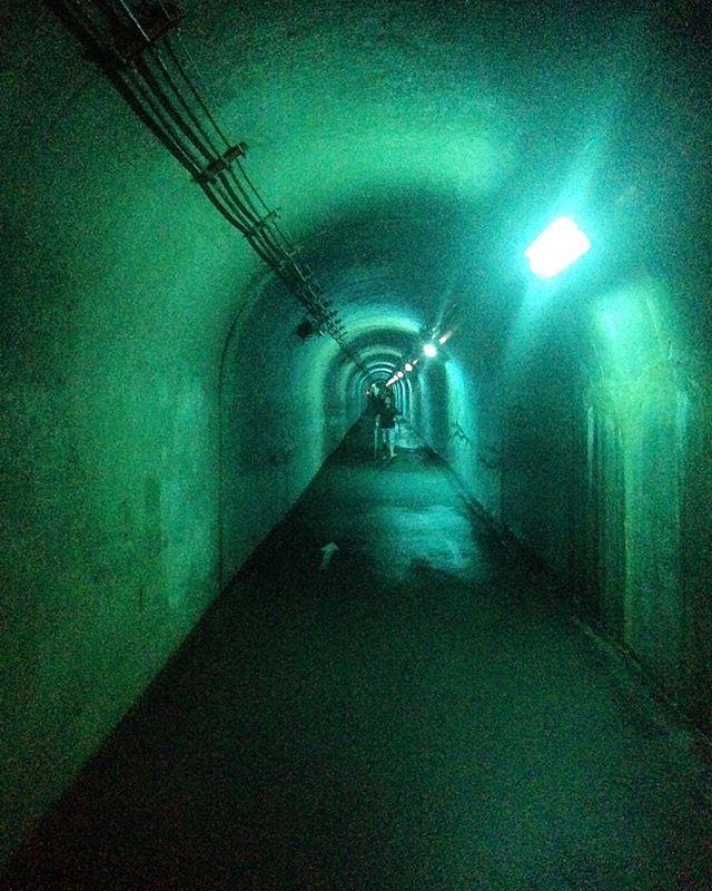 Echigo-Tsumari Art Triennale highlight : walking to the Periscope (blue) . #echigotsumari #echigotsumariarttriennale #triennale #art #arttriennale #arttriennale2018 #tunnel #blue #bluelight #madarchitects with @katietectonic @madarchitects