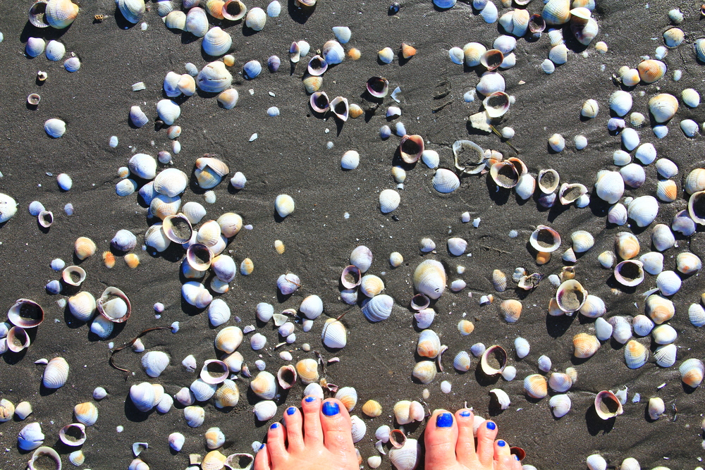 29-1-14 Peep toes.JPG