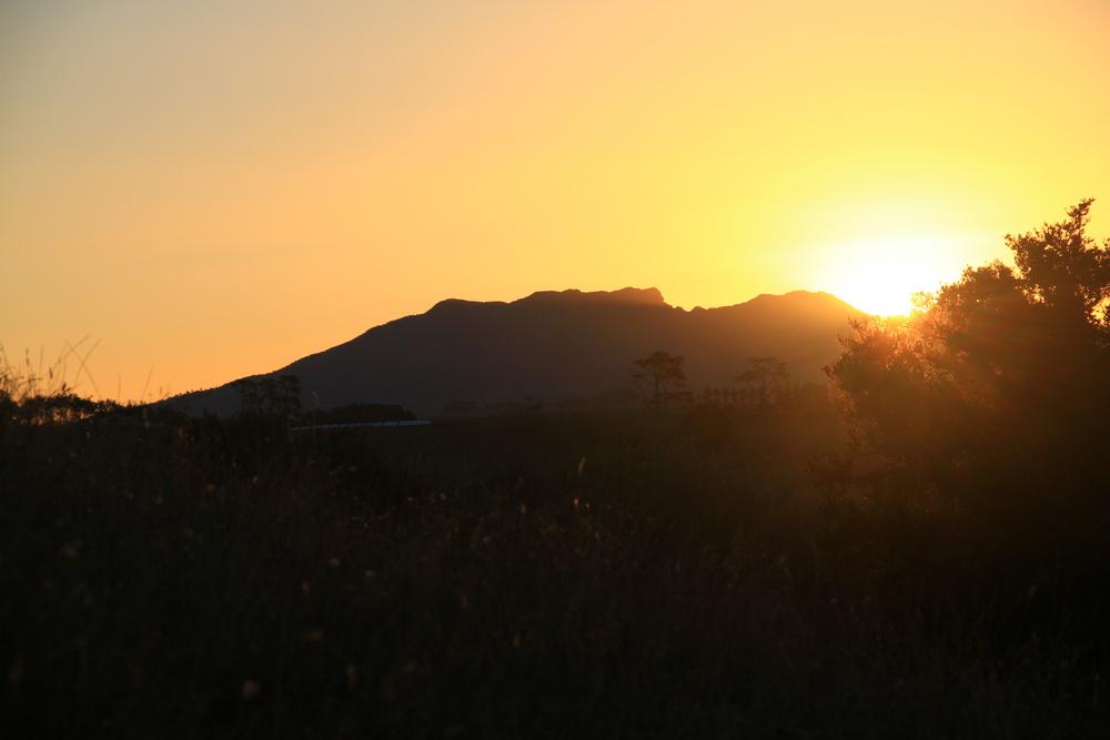 3-2-14 Sunset.JPG
