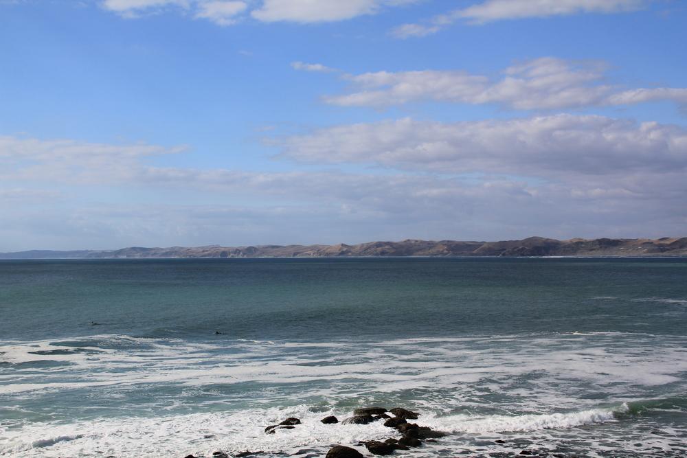 26-2-14 Whale Bay.JPG