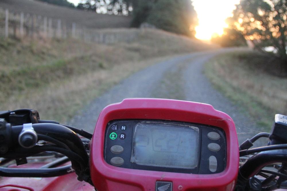 27-2-14 Bike 1.JPG