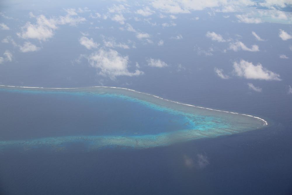30-4-14 Reef.JPG