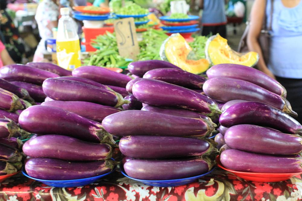 1-5-14 Eggplant.JPG