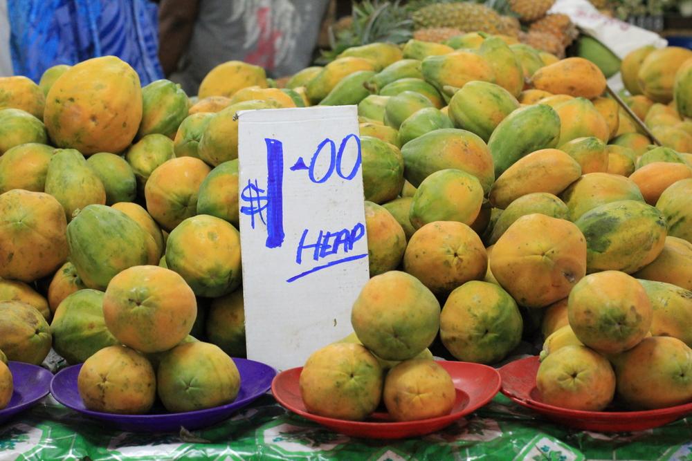 1-5-14 Papaya 3.JPG