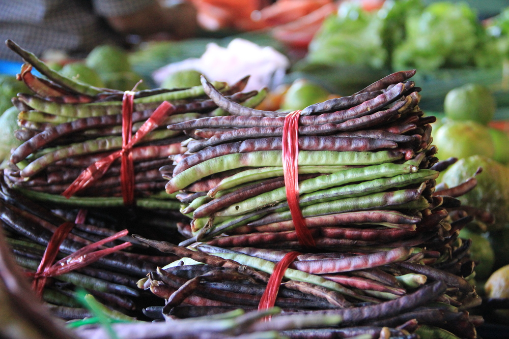 3-5-14 Bora beans 2.JPG