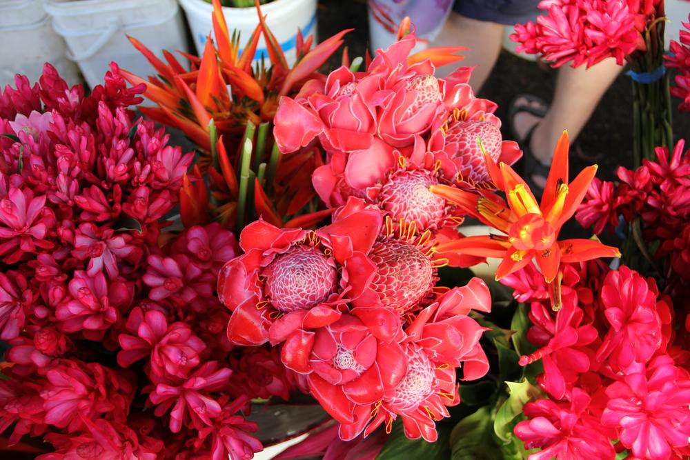 3-5-14 Flowers 2.JPG