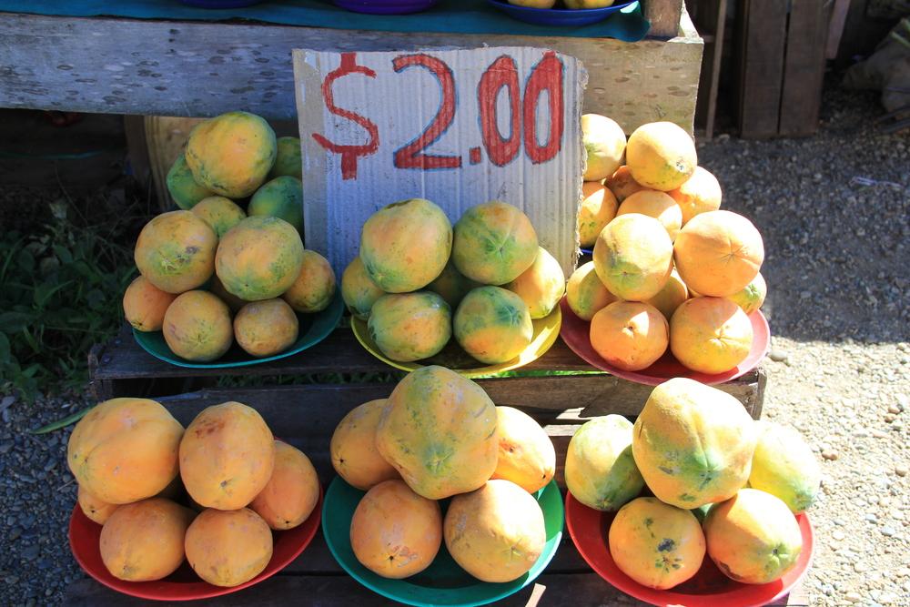 3-5-14 Navua papaya.JPG