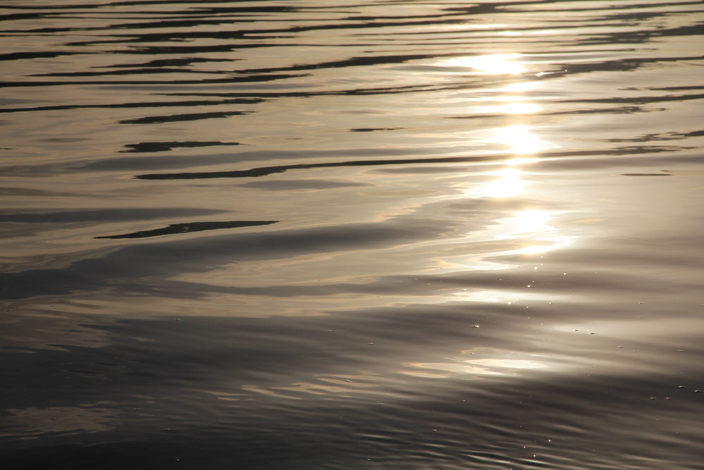 140:365 7-8-14 Still water