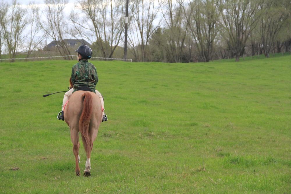 158:365 26-8-14 Farm ride