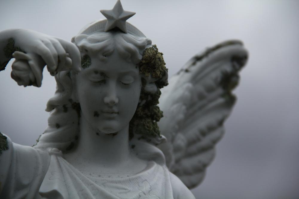 168:365 6-9-14 Alexander's angel