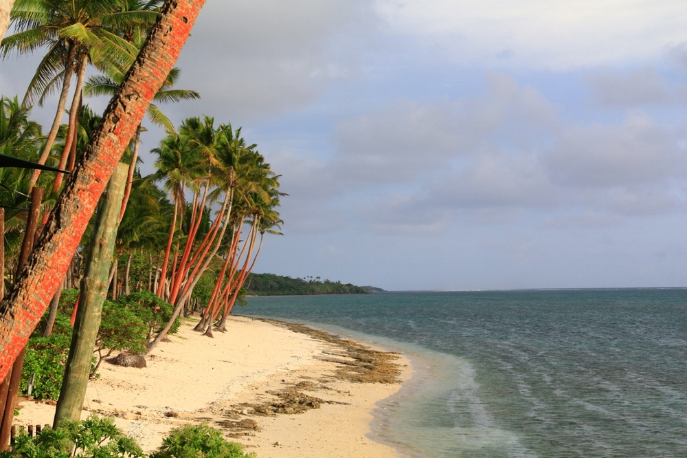 2-12-14 The beach (1280x853).jpg