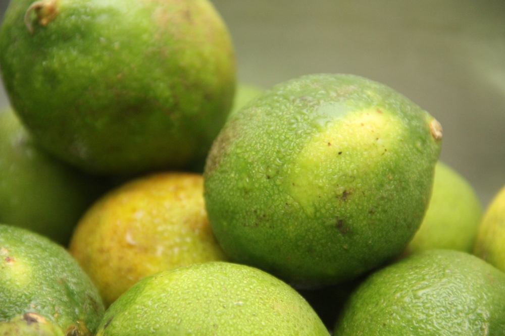 2-12-14 Limes (1280x853).jpg