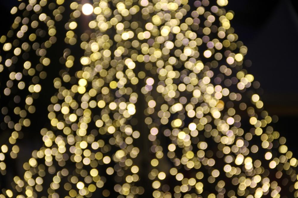 6-12-15 Christmas tree lights