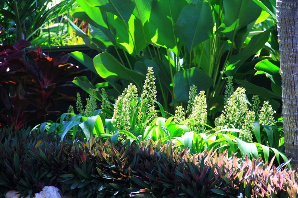9-3-15 Valhalla landscaping (1280x853).jpg