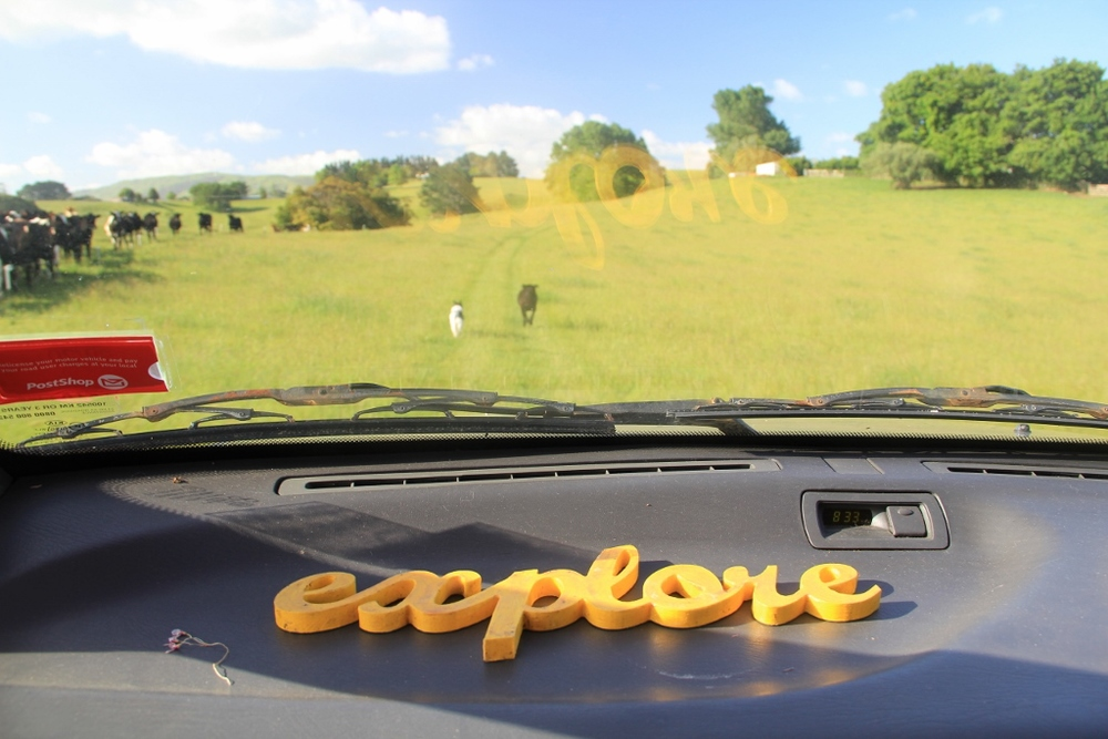 Explore .jpg