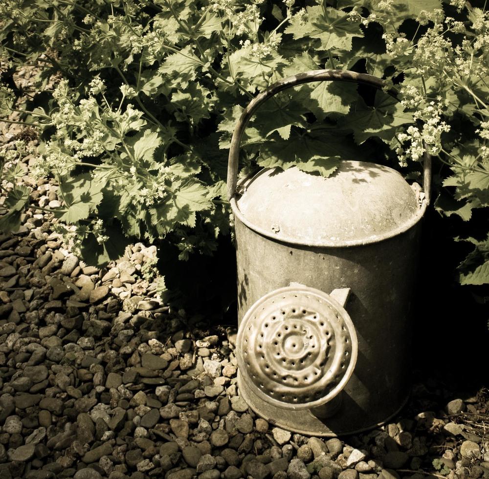 watering can-2.jpg