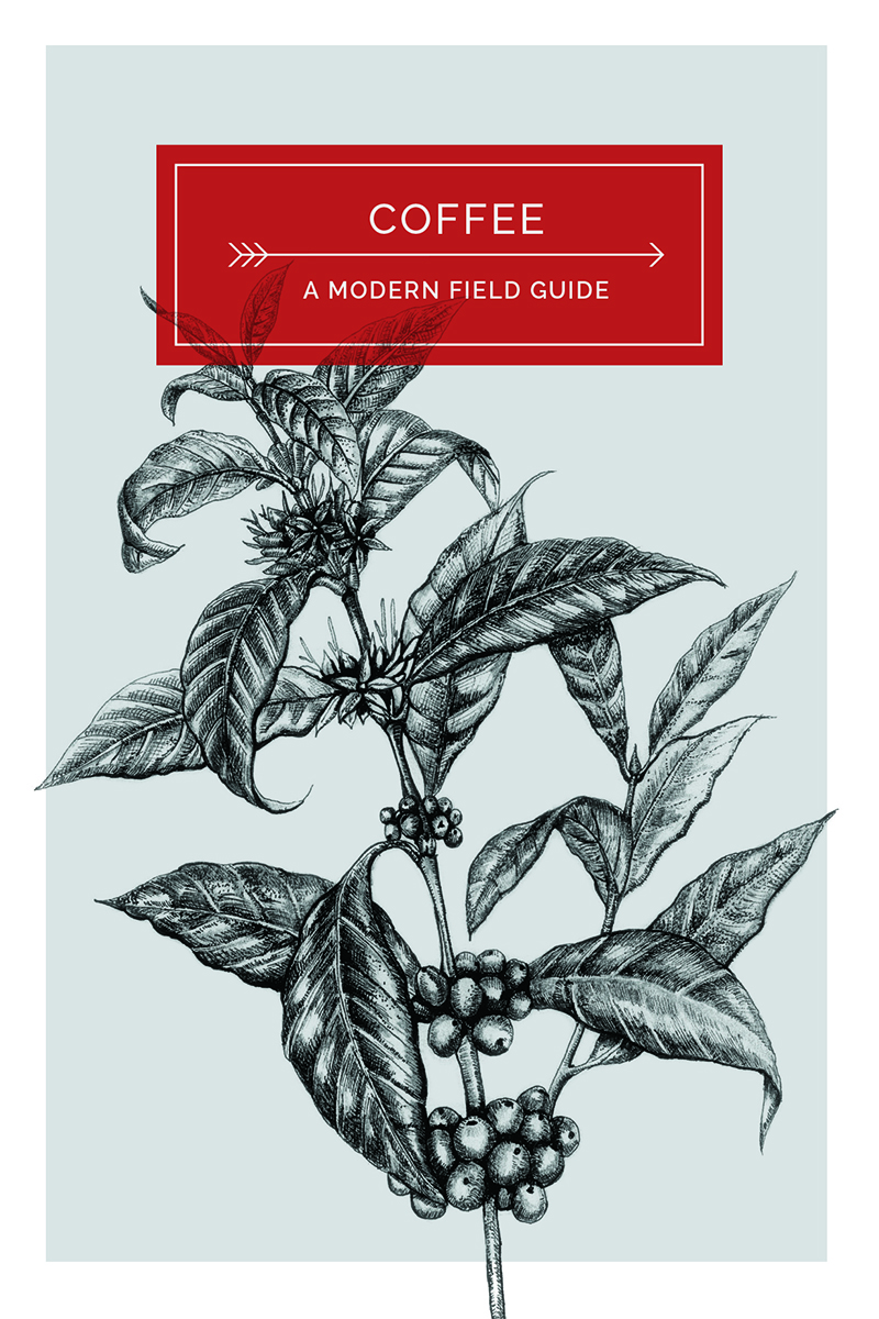 Coffee: A Modern Field Guide,  by Mat North  We Hunt & Gather  £8