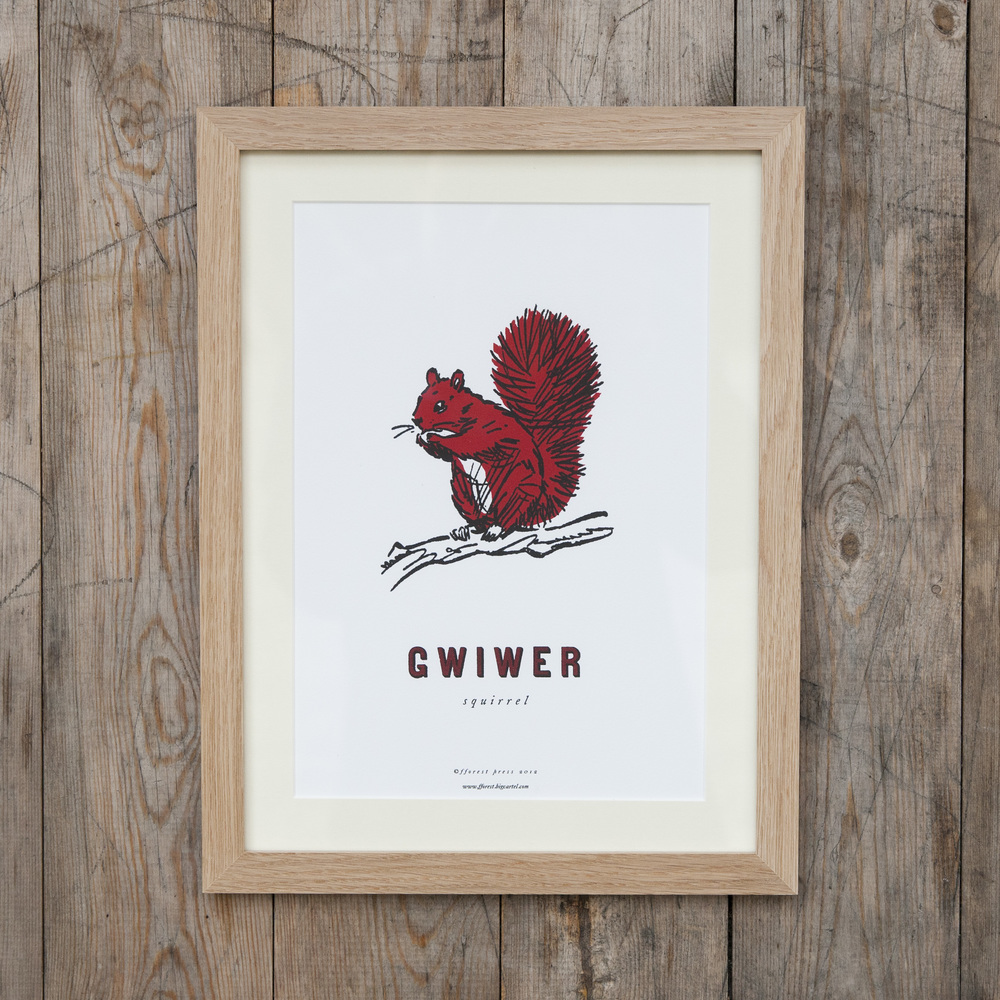 Cymraeg y fforest Prints, £15   Series of prints illustrating Welsh words at the heart of fforest.This little fellow is 'gwiwer', or squirrel. Fox (cadno) and deer (ceirw) also available.