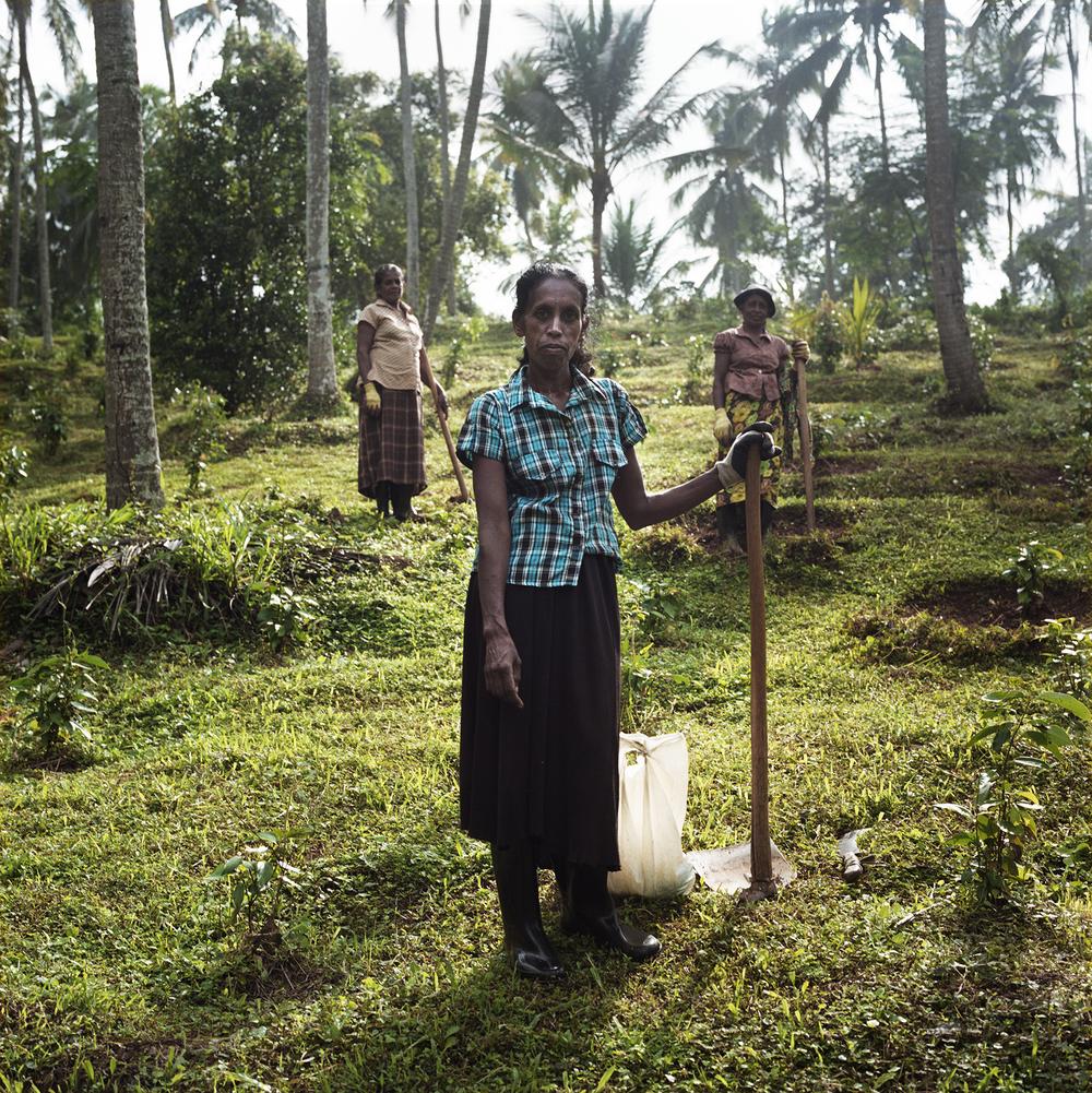 Sri Lanka032.jpg