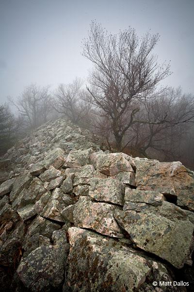 Tussey Mountain, Fog