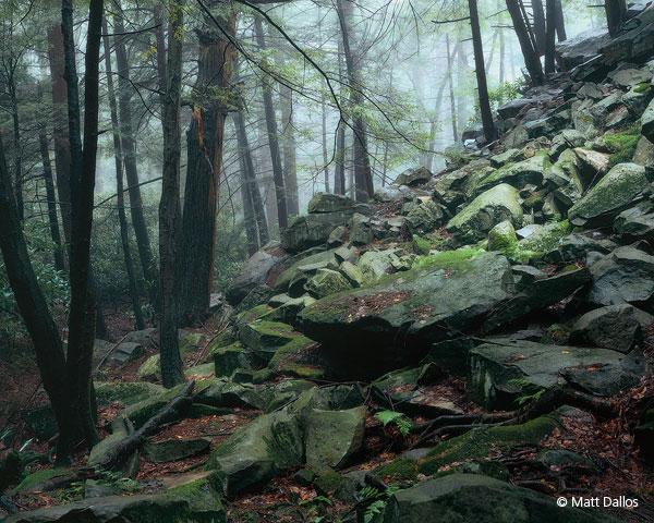 Shingletown Gap, Rocks