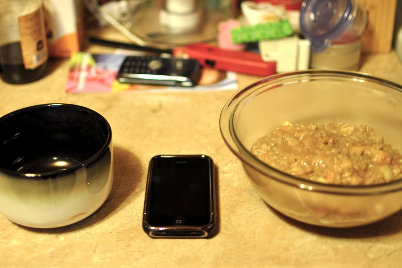 Left to right: regular cereal bowl // iPhone // huge overflowing magnificent bowl of tap-dancing + life-giving oatmeal love