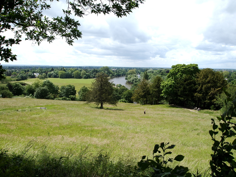 Richmond Hill, Richmond Park