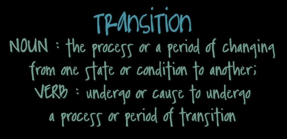 transition 1.jpg