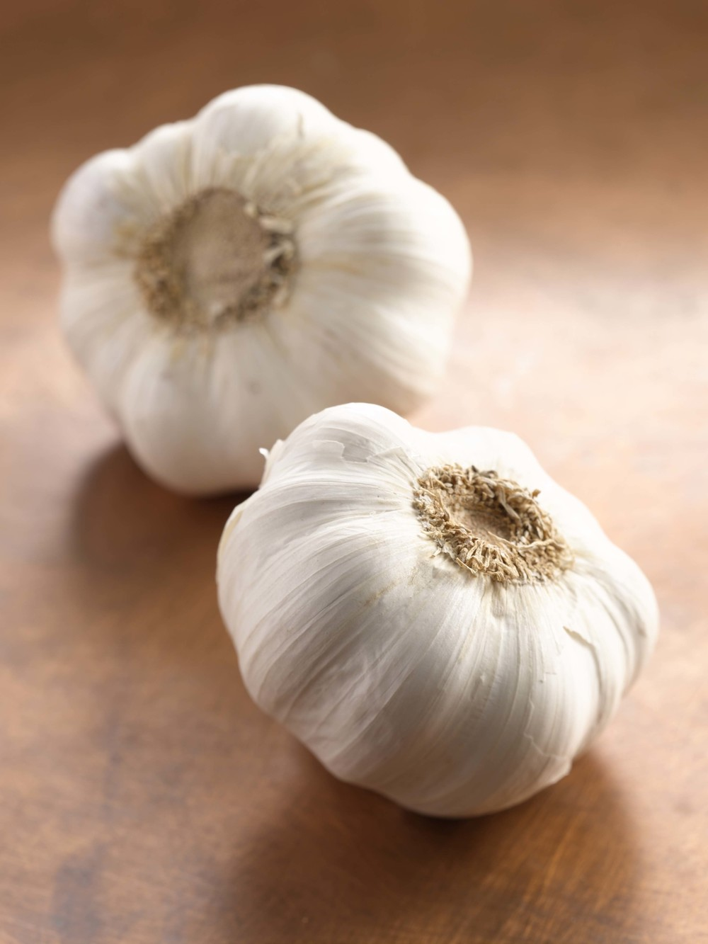Garlic RT.jpg