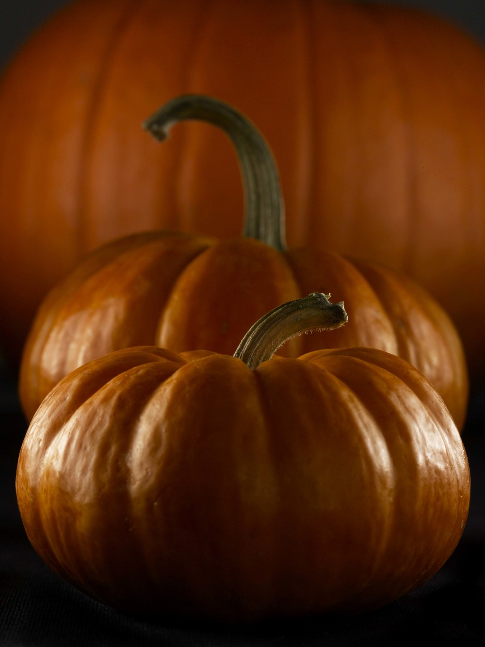 Pumpkins RT.jpg