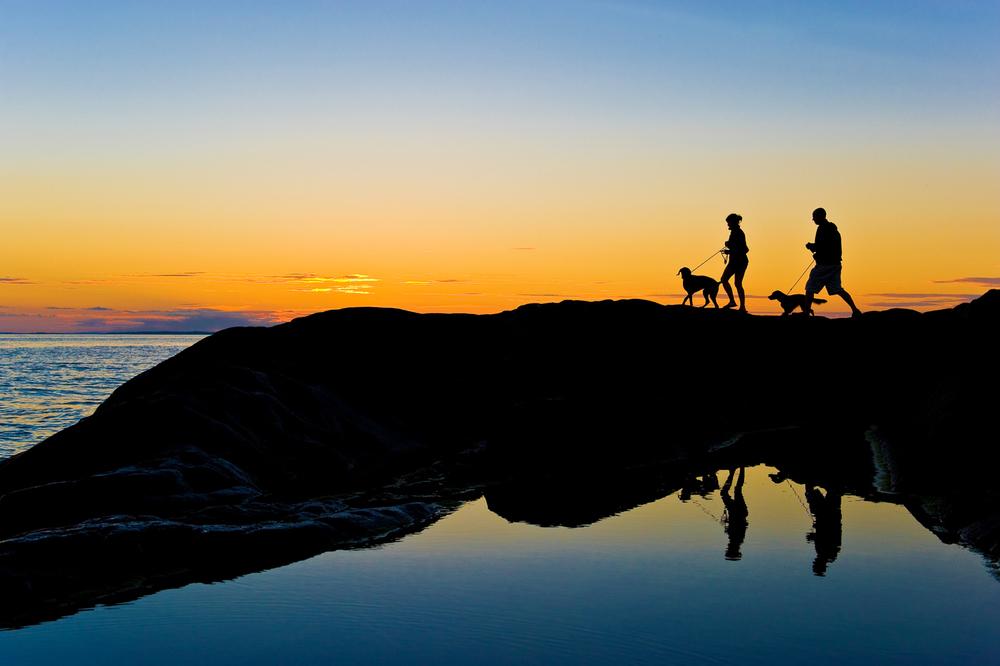 Vestfoldkysten oppleves best via    KYSTSTIEN    LES MER