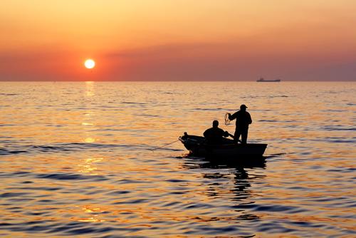 Fiske Vestfold
