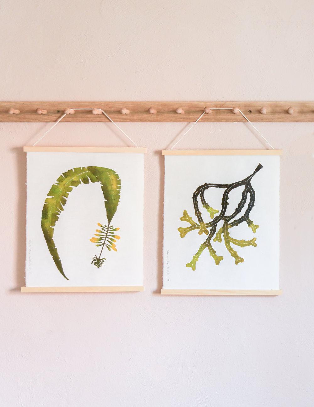 Seaweed Prints Pair.jpg