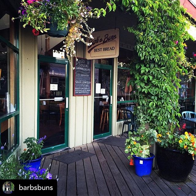Excited and humbled to announce that our coffee is now served at Salt Spring's very own @barbsbuns ☕️We're thrilled to be working with this amazing island business, and can't wait for summer to come back so we can sit on their beautiful patio again! 📸 @barbsbuns #patiocoffee #saltspringisland #barbsbuns #mtmaxwellcoffee