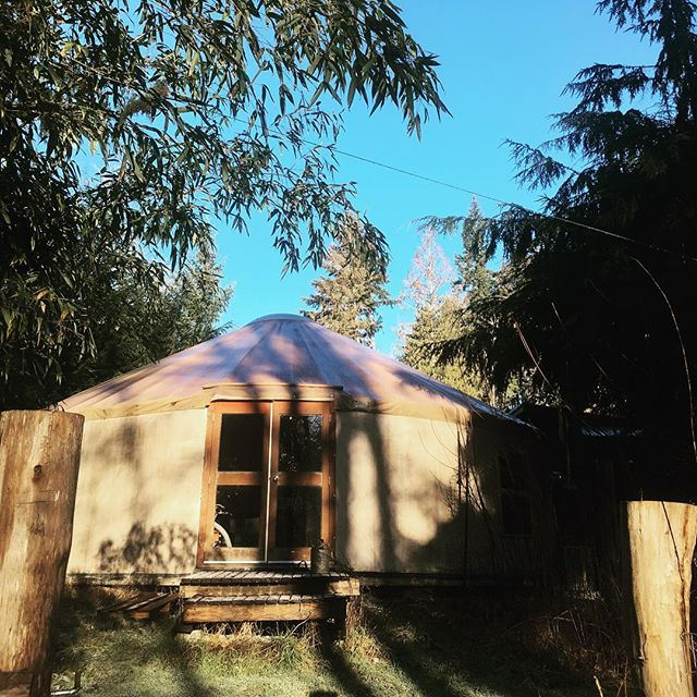 Not too bad for a Monday 🙌☀️☕️ #mtmaxwellcoffee #yurtlife #coffee #saltspringisland
