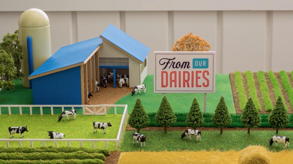 from our dairies land o lakes nicolas fredrickson
