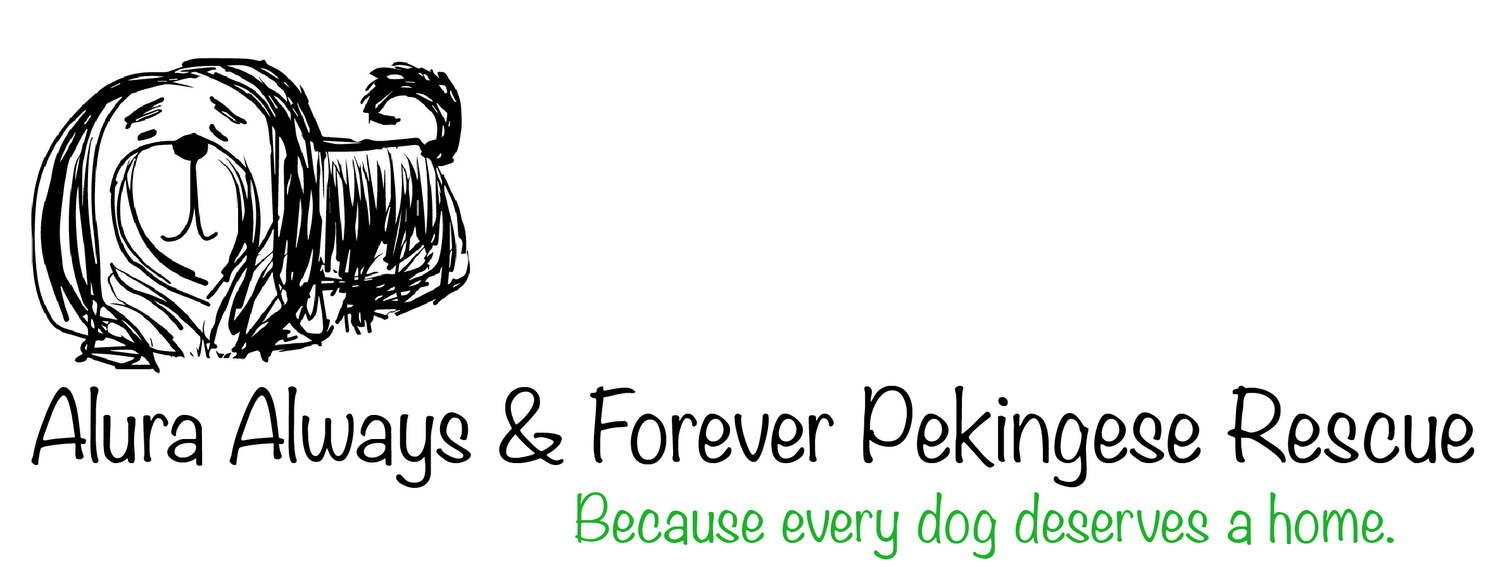 Alura Always & Forever Pekingese Rescue