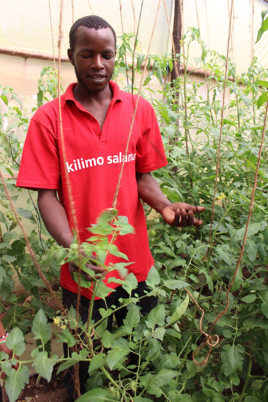 Farmer TIST Project, Kenya