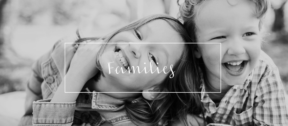 homepage-families3-1024x450.jpg