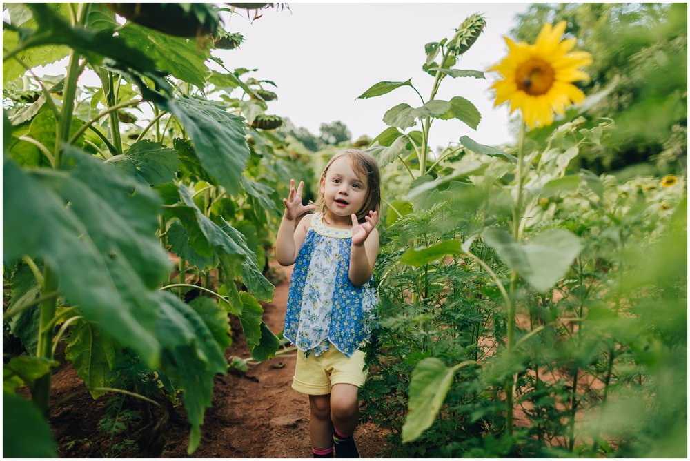 mckee-beshers-sunflowers-family-photography-1.jpg