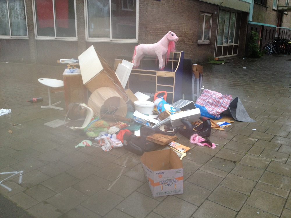 Pink pony & Debris