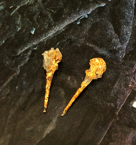 First two hummingbird skulls casted with gold leaf. The first one didn't turn out very good, but I'm happy with the second!