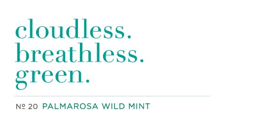 No. 20 Palmarosa Wild Mint