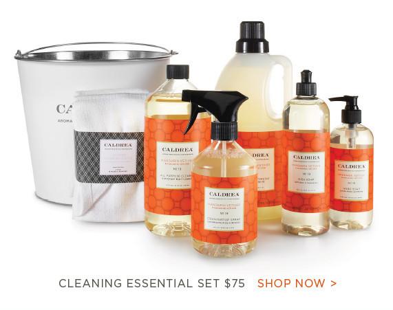 Mandarin Vetiver Cleaning Essentials Set