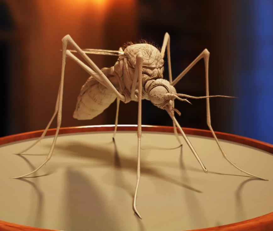 mosquito_030314.jpg