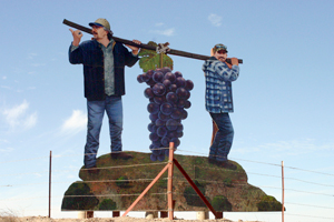 Two workers and grapes