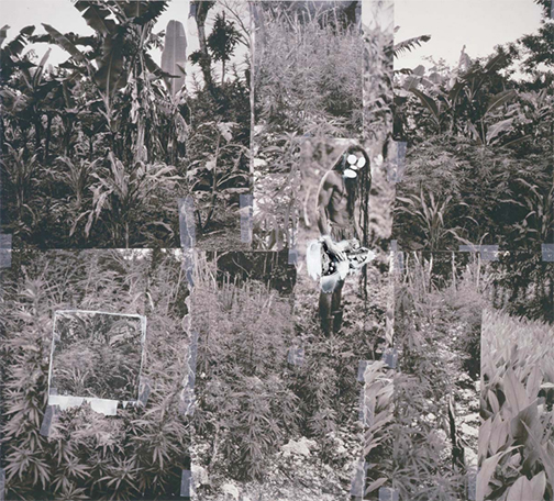 image by Richard Prince, appropriating photographs by Patrick Cariou / source: http://www.artlawreport.com/files/2011/12/Prince-Gagosian-Appeals-Brief-B1363742.pdf