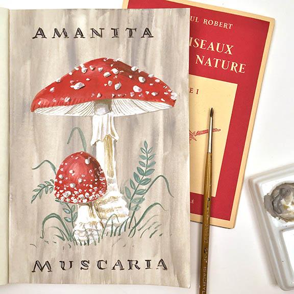 Amanita Muscaria © Angela Staehling